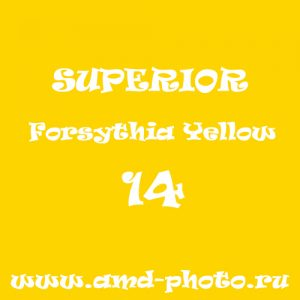 Фон бумажный SUPERIOR Forsythia Yellow 14, LASTOLITE Yellow 9071, COLORAMA Buttercup 70