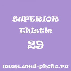 Фон бумажный SUPERIOR Thistle 29, LASTOLITE Amethyst 9029, COLORAMA Lilac 10