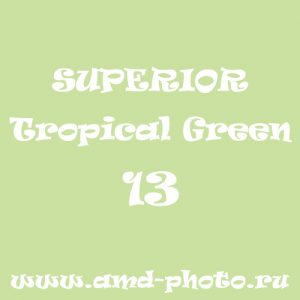 Фон бумажный SUPERIOR Tropical Green 13, COLORAMA Fern 12