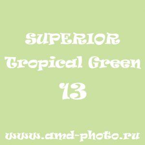 Фон бумажный SUPERIOR Tropical Green 13, COLORAMA Fern 12